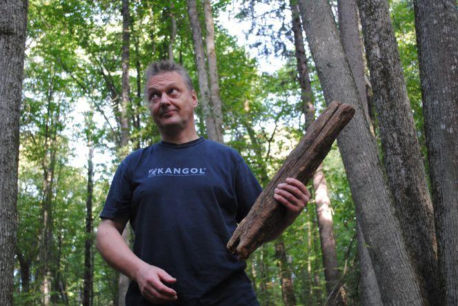 Pan Andrzej Keczynski prezentuje plaszke (zatwór) z przewróconej 20 lat temu sosny dwubartnej. Fot. P. Pilasiewicz