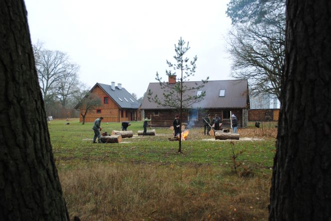 Warsztaty z perspektywy lasu. Fot. P. Kotwica